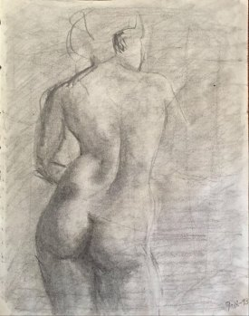 female anatomy back