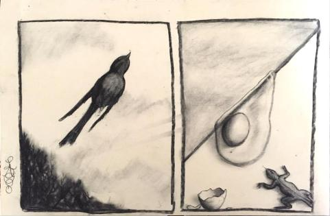 more birds and eggs